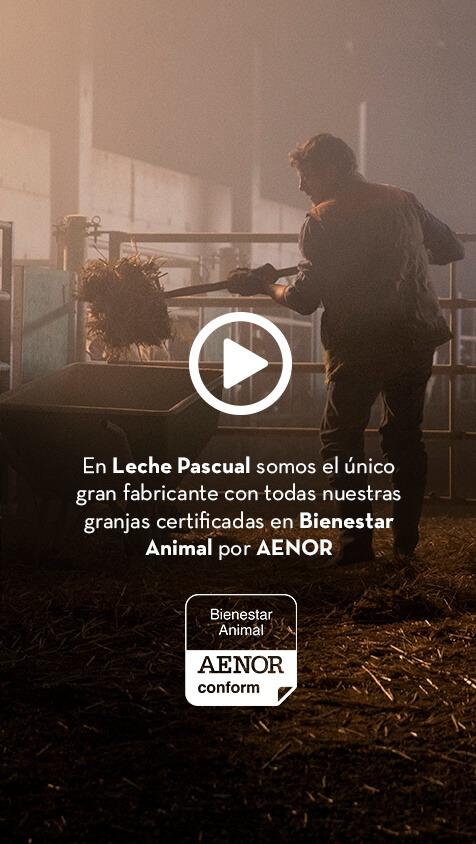 Leche Pascual Cabecera