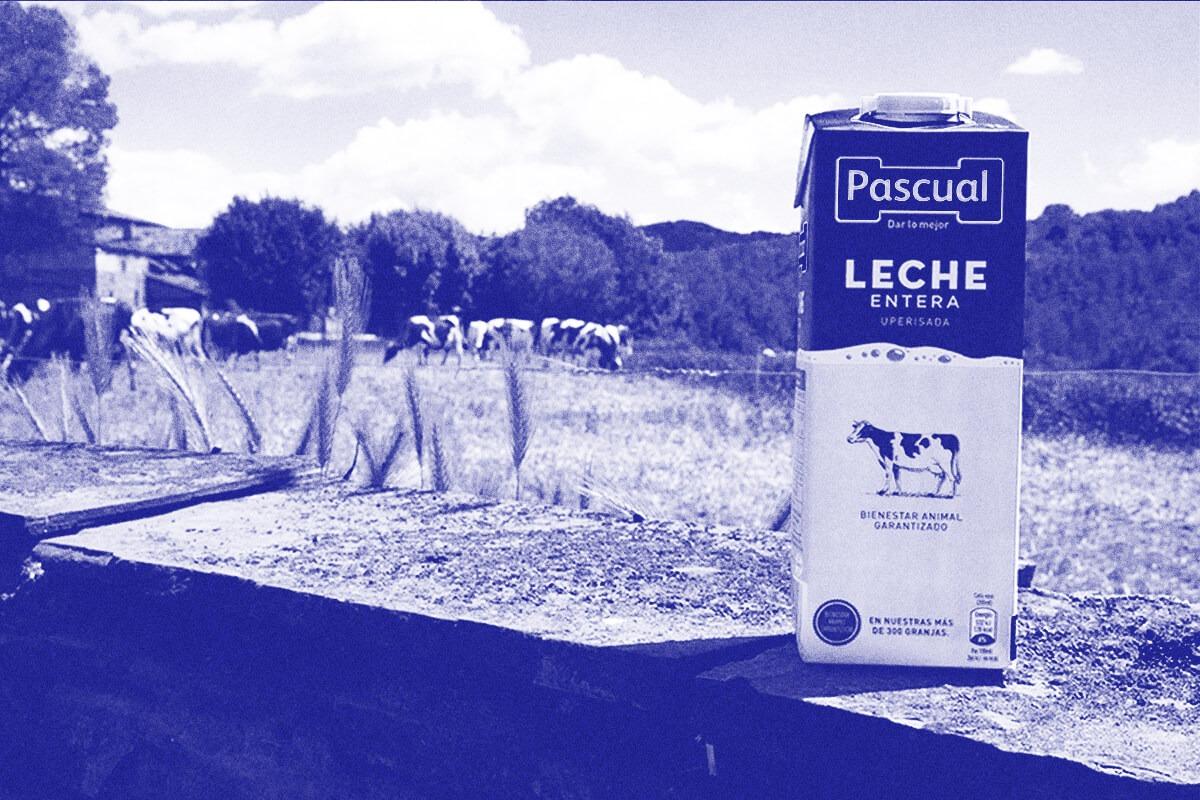 Calidad de la leche | Leche Pascual