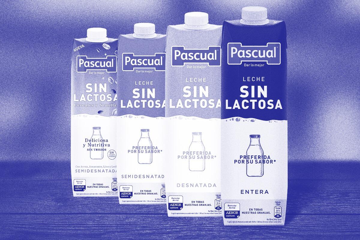 intolerancia a la lactosa - Leche Sin Lactosa Pascual