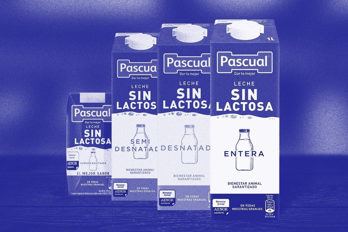Leche sin lactosa briks Pascual